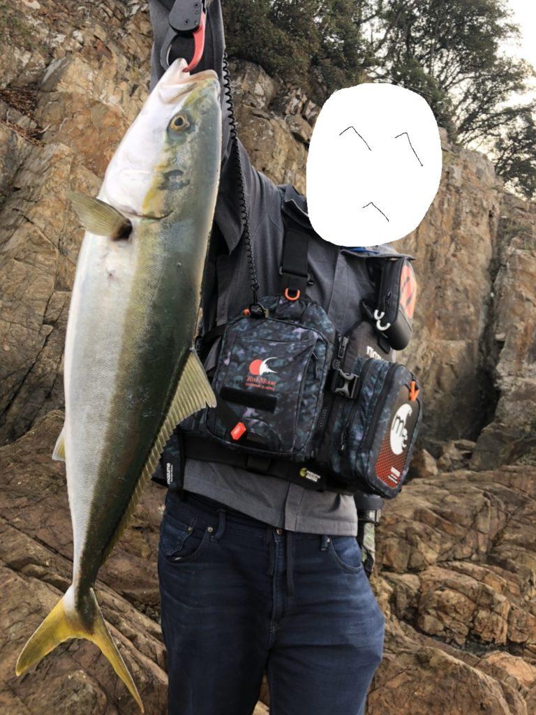 ルアーで釣れたハマチ